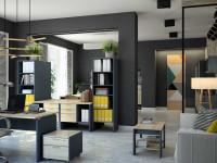 Стеллаж в офис: виды, характеристики, материалы, цвет и стиль (98 фото-идей)