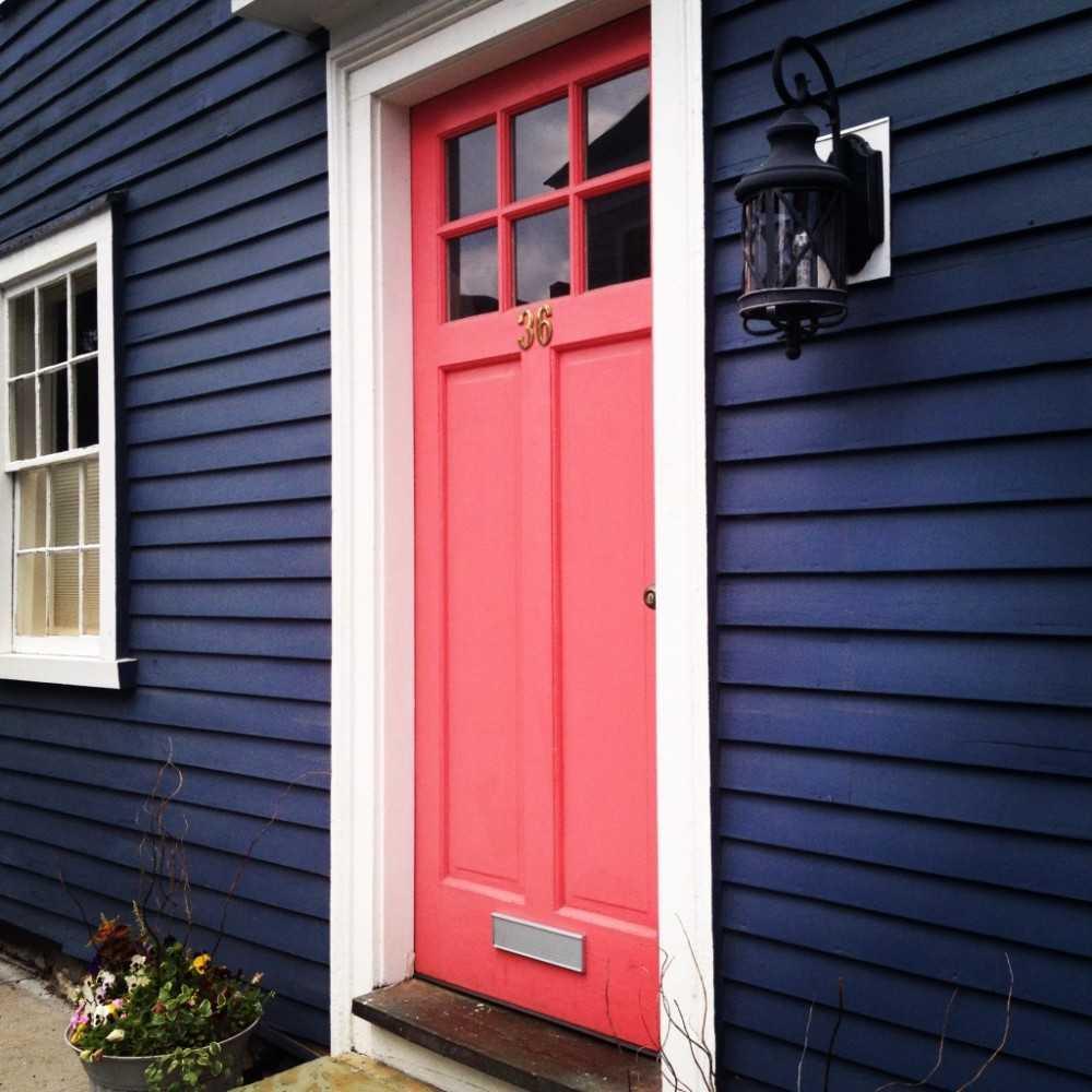 Цвет дверей – вариации подбора цвета и дизайнерский неординарный подход (101 фото)