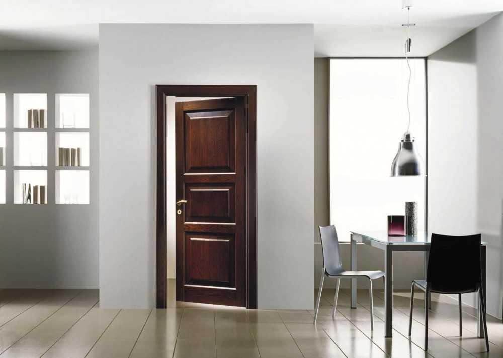 Распашные двери: на что обратить внимание при покупке? 103 фото современных и стильных решений