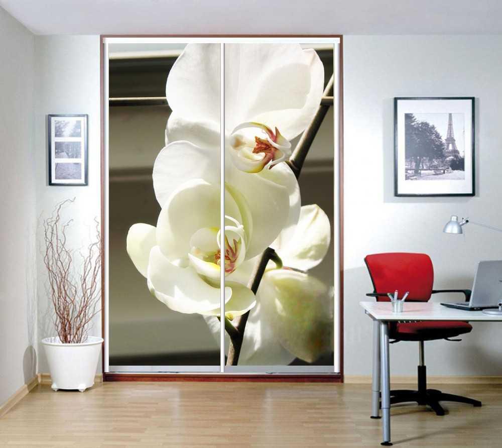 Шкаф с фотопечатью: 88 фото объемных 3d изображений на мебел.