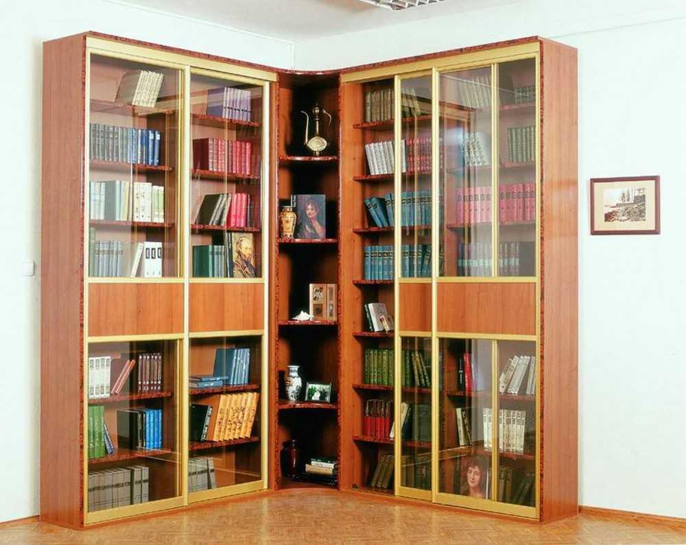 Шкаф-купе книжный бостон 2 для библиотеки.